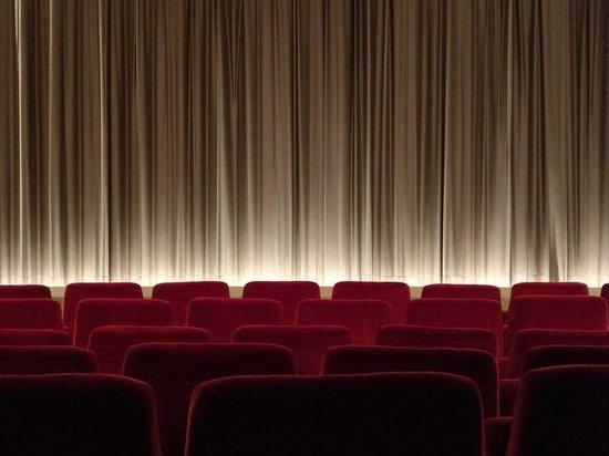 В театрах и кинотеатрах Карелии сможет находиться больше 50 человек