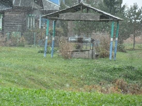 В Тверской области выпал первый снег