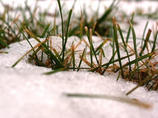 В Москве прошел первый мокрый снег с дождем