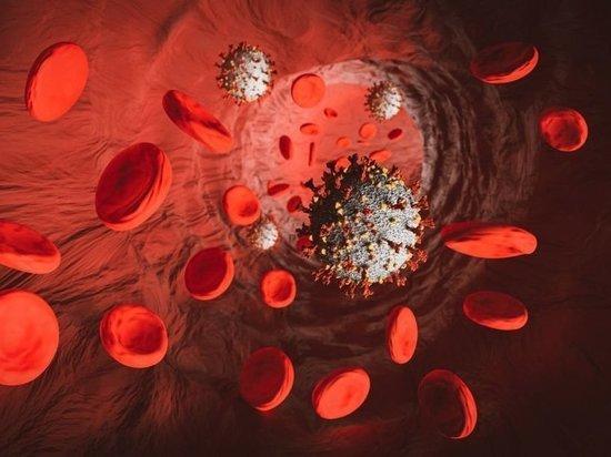 Хроники коронавируса в Тверской области: главное к 18 октября