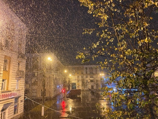 Опубликованы первые снежные кадры из районов Тверской области
