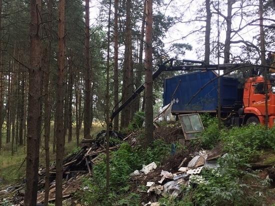 Жители Конаковского района могут сообщить о стихийных свалках
