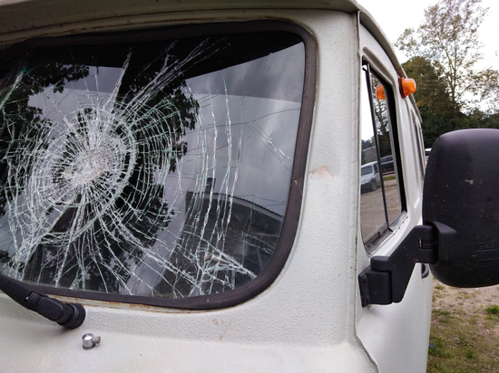 Полицейские из Тверской области задержали вредителя
