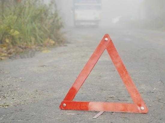11 жителей Ефремова за две недели лишились водительских прав photo