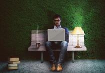 Больше всех зарабатывают сотрудники IT-сектора
