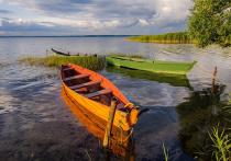 Промозглая погода не помешала нескольким десяткам художников собраться на берегу Плещеева озера и  провести акцию в его защиту