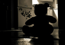 В Чикаго семилетняя школьница подверглась изнасилованию во время дистанционных занятий