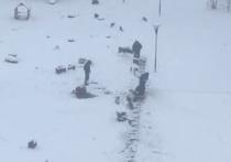 Рабочие в Новом Уренгое укладывают плитку поверх снега