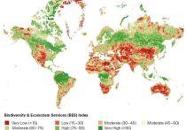 Экосистема Казахстана – одна из самых пострадавших в мире от рук человека