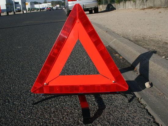 В Новосибирской области «Тойота» насмерть сбила водителя на обочине