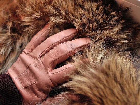 Шуба и сумки Louis Vuitton: преподавателя МГИМО ограбили