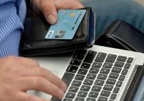 Хакасия лидирует в СФО по увеличению электронных платежей