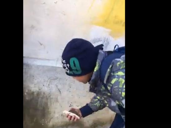 Маленький Мальчик Занимается Сексом Порно Видео