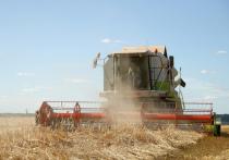 В Кировской области собрали рекордный урожай зерна