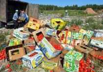 Фудшеринг по-иркутски: кто отдает еду бесплатно
