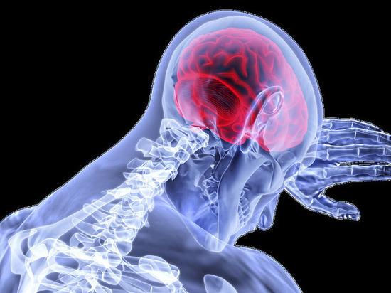 Врачи рассказали, какую опасность представляет коронавирус для мозга  человека - МК Кузбасс