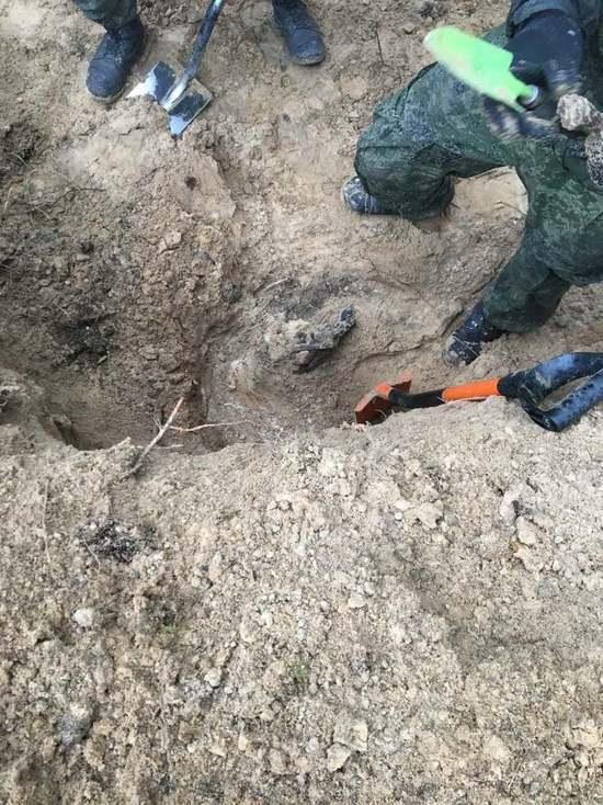 Под Псковом нашли место массового расстрела и захоронения мирных жителей