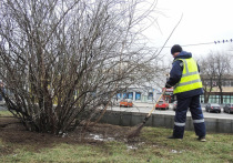 Число трудовых мигрантов в Москве в этом году сократилось примерно на 40%