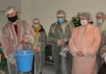 В Логозовичах открыли органик-центр «Активное село»