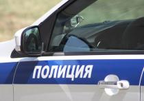 Дворник детсада в Усолье с игрушечным пистолетом ограбил школьного повара