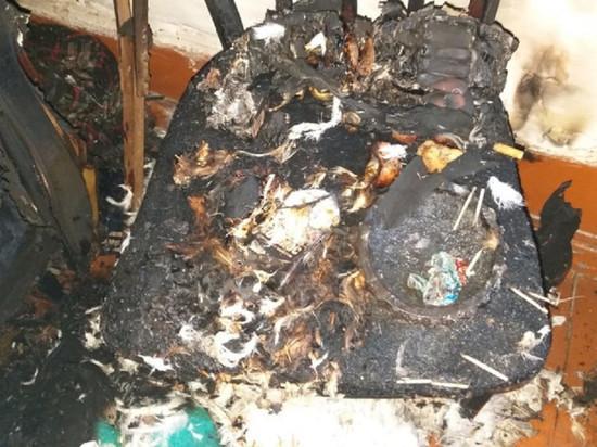 При пожаре в Пижанке погибли мать и сын