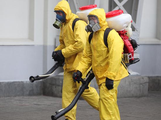Центр мониторинга биологических рисков подсчитал, что полностью пандемия коронавируса в России прекратится в декабре 2021 года, такой результат получен на основе математического анализа, сообщает URA