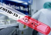Коронавирус принес в нашу жизнь новые реалии - сдача теста на COVID-19, штрафы за нарушения самоизоляции, специальная обработка помещений, особые ограничения для тех, кому больше 65, и другие