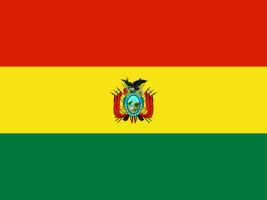 Новый президент Боливии назвал Путина своим братом