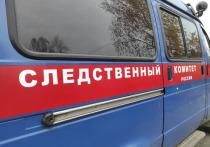 Дело на полицейского возбудили после стрельбы в Большеорловском