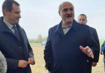 Президент Белоруссии Александр Лукашенко считает, что употребление сыра помогает вылечиться от коронавируса
