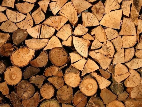 Свыше 5 млн заплатит житель Пыталово за незаконный провоз лесоматериалов