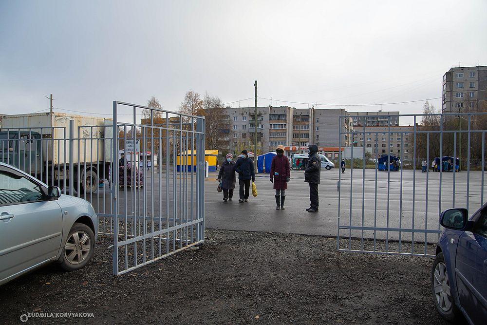 Только карельские производители: чем оригинальна новая осенняя ярмарка в Петрозаводске
