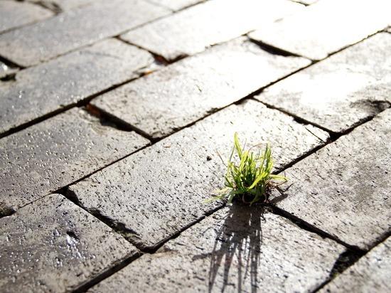 Во Владимирской области продолжают работать над повышением качества городской среды
