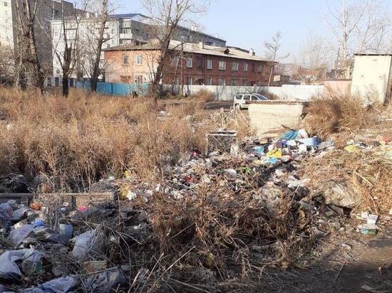 Незаконные свалки в Чите уберут на следующей неделе