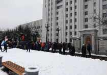 Укороченным маршрутом прошли митингующие в Хабаровске