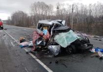 В Новосибирской области в субботу, 24 октября, произошло ДТП, в котором погибли двое детей