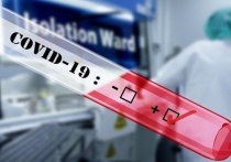 Ковид в Бурятии: 213 человек заболели, 92 - выздоровели, 5 - умерли