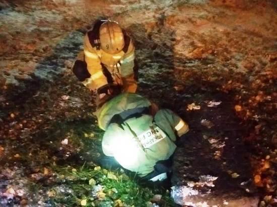 Следователи Барнаула начали проверку после падения девочки в колодец