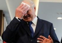 Противник Лукашенко объяснил смысл ультиматума Тихановской: ген партизана