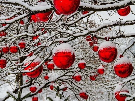 Новогодние украшения для Пскова можно будет выбрать в приложении «Умный регион»