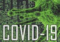26 октября: в Германии зарегистрировано 8 685 новых случаев заражения Covid-19