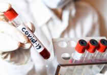 В Якутии зарегистрировано еще 176 случаев COVID-19
