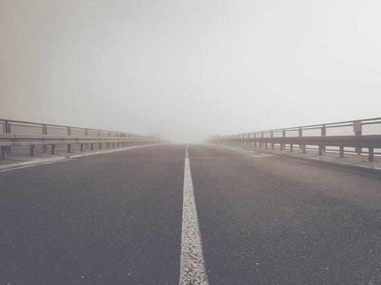 Туман сохранится в Псковской области в ближайшее время
