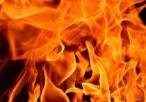 Библиотека горела в Сегеже в воскресенье