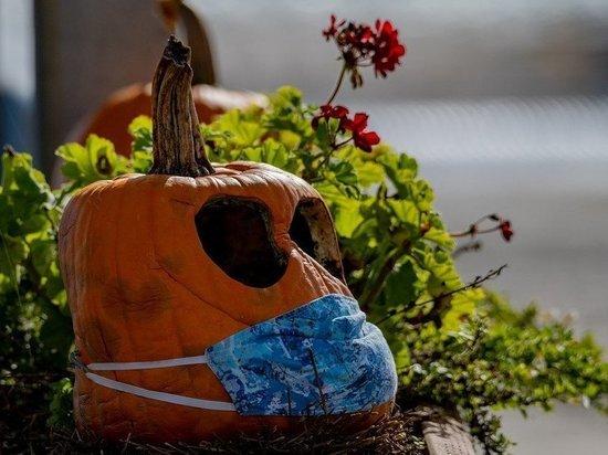 Костюм коронавируса и праздничные маски: воронежцы готовятся к Хэллоуину