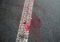 ГИБДД разыскивает очевидцев сразу трех ДТП с пешеходами в Абакане
