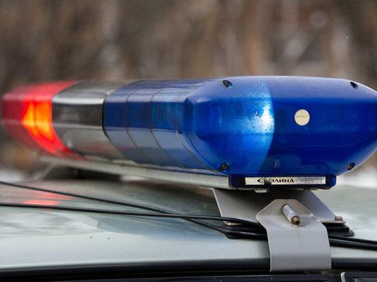В Подмосковье под колесами автомобиля погибла девочка