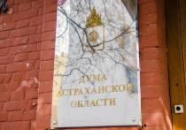 Депутаты Астраханской Думы вновь предлагают изменить федеральное законодательство