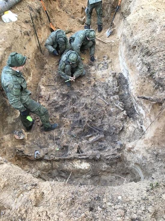 Под Псковом нашли останки восьми расстрелянных детей