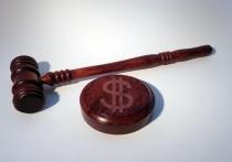 В Новосибирске осудили директора агентства недвижимости за мошенничество на 300 млн рублей